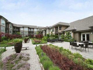 "Photo 11: 403 18818 68 Street in Surrey: Clayton Condo for sale in ""CALERA"" (Cloverdale)  : MLS®# R2525757"