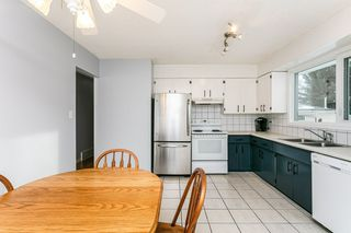 Photo 19: 31 GROVELAND Road: Sherwood Park House for sale : MLS®# E4224942