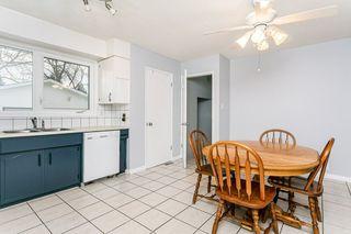 Photo 17: 31 GROVELAND Road: Sherwood Park House for sale : MLS®# E4224942