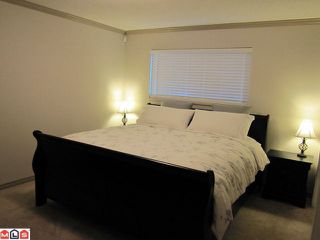 Photo 7: 2415 WAYBURNE in Langley: Willoughby Heights House for sale : MLS®# F1218004