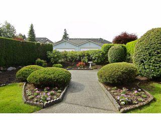 "Photo 19: 19 8889 212 Street in LANGLEY: Walnut Grove Townhouse for sale in ""GARDEN TERRACE"" (Langley)  : MLS®# F1313371"