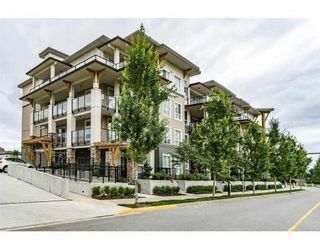 Main Photo: 211 12409 Harris Road: Condo for sale (Pitt Meadows)  : MLS®# R2083691