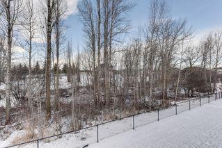 Photo 4: 17 Briarwood Village: Stony Plain House Half Duplex for sale : MLS®# E4046011