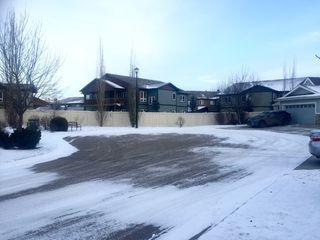 Photo 39: 17 Briarwood Village: Stony Plain House Half Duplex for sale : MLS®# E4046011