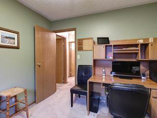 Photo 15: 5420 46 Street: Stony Plain House for sale : MLS®# E4176042