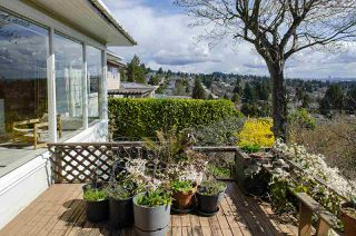 Photo 10: 2578 NELSON Avenue in West Vancouver: Dundarave House for sale : MLS®# R2447851