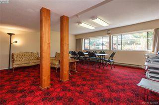 Photo 19: 406 1145 Hilda Street in VICTORIA: Vi Fairfield West Condo Apartment for sale (Victoria)  : MLS®# 423788
