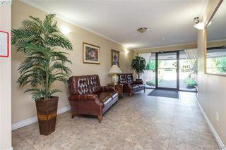 Photo 3: 406 1145 Hilda Street in VICTORIA: Vi Fairfield West Condo Apartment for sale (Victoria)  : MLS®# 423788