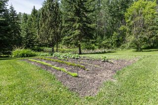 Photo 41: 26 460002 Hwy 771: Rural Wetaskiwin County House for sale : MLS®# E4203130