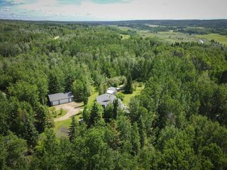 Photo 49: 26 460002 Hwy 771: Rural Wetaskiwin County House for sale : MLS®# E4203130