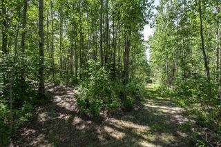 Photo 38: 26 460002 Hwy 771: Rural Wetaskiwin County House for sale : MLS®# E4203130