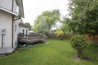 Photo 19: 567 Templeton Avenue in Winnipeg: Residential for sale (4F)  : MLS®# 202014719