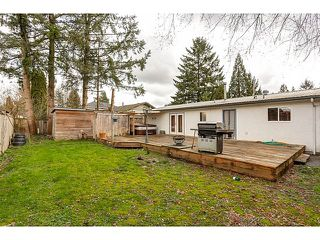Photo 6: 21167 wicklund Avenue in Maple Ridge: Northwest Maple Ridge House for sale : MLS®# R2046258