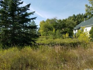 Photo 2: Blanchette Acreage in Cut Knife: Residential for sale (Cut Knife Rm No. 439)  : MLS®# SK786931