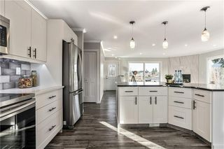 Photo 9: 72 MAITLAND Green NE in Calgary: Marlborough Park Detached for sale : MLS®# C4275960