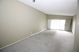 Photo 4: 5763 HARDWICK Street in Burnaby: Central BN House Duplex for sale (Burnaby North)  : MLS®# R2451389
