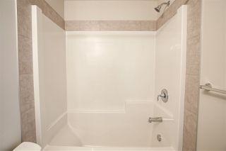 Photo 23: 22505 99A Avenue in Edmonton: Zone 58 House for sale : MLS®# E4198623