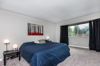 "Photo 15: 12028 CHESTNUT Crescent in Pitt Meadows: Mid Meadows House for sale in ""SOMERSET"" : MLS®# R2470653"