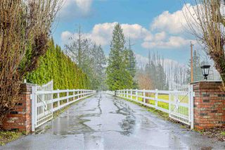 Photo 1: 4222 216 Street in Langley: Murrayville House for sale : MLS®# R2523266