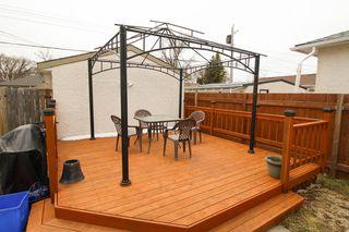 Photo 22: 210 Edward Avenue West - Winnipeg Home For Sale