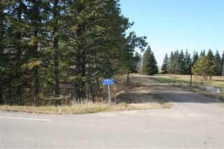 Photo 6: 40224 Range Road 272: Rural Lacombe County Rural Land/Vacant Lot for sale : MLS®# E4177400
