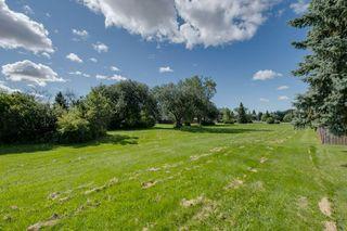 Photo 16: 309 1945 105 Street in Edmonton: Zone 16 Condo for sale : MLS®# E4208139