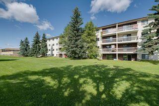 Photo 1: 309 1945 105 Street in Edmonton: Zone 16 Condo for sale : MLS®# E4208139