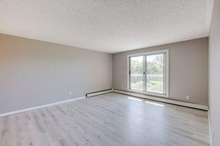 Photo 3: 309 1945 105 Street in Edmonton: Zone 16 Condo for sale : MLS®# E4208139