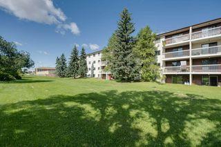 Photo 14: 309 1945 105 Street in Edmonton: Zone 16 Condo for sale : MLS®# E4208139
