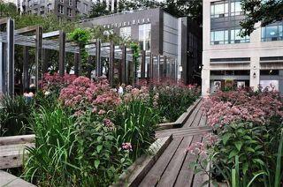 Photo 9: 707 102 W Bloor Street in Toronto: Annex Condo for lease (Toronto C02)  : MLS®# C4906018