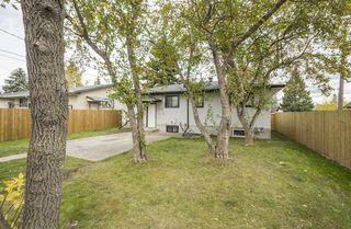 Photo 24: 9508 52 Street in Edmonton: Zone 18 House for sale : MLS®# E4175206
