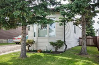 Photo 30: 204 Springdale Circle: Airdrie Detached for sale : MLS®# A1014317
