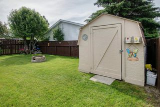 Photo 25: 204 Springdale Circle: Airdrie Detached for sale : MLS®# A1014317