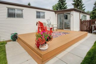 Photo 23: 204 Springdale Circle: Airdrie Detached for sale : MLS®# A1014317