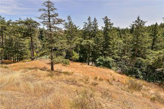 Photo 12: 5156 Rocky Point Rd in : Me Rocky Point Single Family Detached for sale (Metchosin)  : MLS®# 845707
