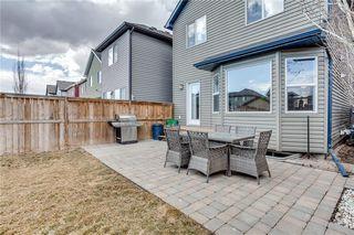 Photo 17: 220 AUTUMN Green SE in Calgary: Auburn Bay Detached for sale : MLS®# A1050487