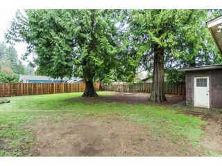 Photo 22: 21691 MOUNTAINVIEW Crescent in Maple Ridge: West Central House for sale : MLS®# R2525083