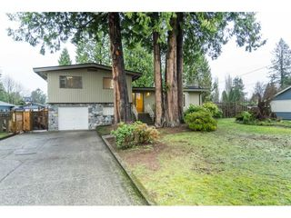 Photo 2: 21691 MOUNTAINVIEW Crescent in Maple Ridge: West Central House for sale : MLS®# R2525083