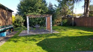 Photo 44: 32232 Pineview Avenue in Abbotsford: Abbotsford West House for sale