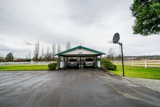 Photo 13: 22173 64 AVENUE Avenue in Langley: Salmon River House for sale : MLS®# R2428399