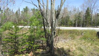 Photo 8: 1480 Highway 103 in Sable River: 407-Shelburne County Vacant Land for sale (South Shore)  : MLS®# 202009214