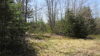 Photo 6: 1480 Highway 103 in Sable River: 407-Shelburne County Vacant Land for sale (South Shore)  : MLS®# 202009214