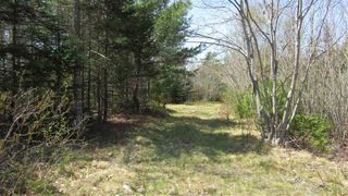 Photo 5: 1480 Highway 103 in Sable River: 407-Shelburne County Vacant Land for sale (South Shore)  : MLS®# 202009214