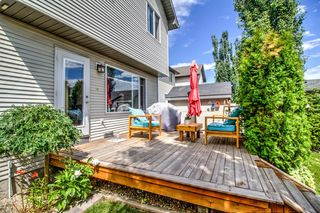 Photo 19: 254 CRAMOND Circle SE in Calgary: Cranston Detached for sale : MLS®# A1014365