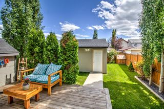 Photo 25: 254 CRAMOND Circle SE in Calgary: Cranston Detached for sale : MLS®# A1014365