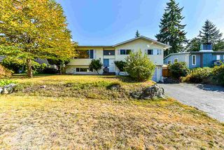 Photo 1: 8809 DELWOOD Drive in Delta: Nordel House for sale (N. Delta)  : MLS®# R2398355