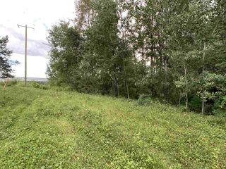 Photo 12: King St & 2nd Ave: Rural Parkland County Rural Land/Vacant Lot for sale : MLS®# E4171458