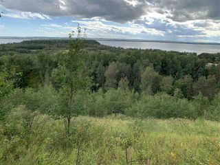 Photo 3: King St & 2nd Ave: Rural Parkland County Rural Land/Vacant Lot for sale : MLS®# E4171458