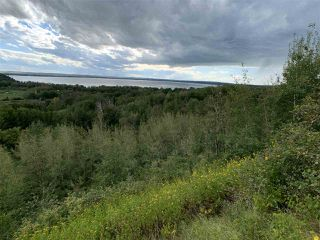 Photo 7: King St & 2nd Ave: Rural Parkland County Rural Land/Vacant Lot for sale : MLS®# E4171458