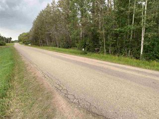 Photo 8: King St & 2nd Ave: Rural Parkland County Rural Land/Vacant Lot for sale : MLS®# E4171458